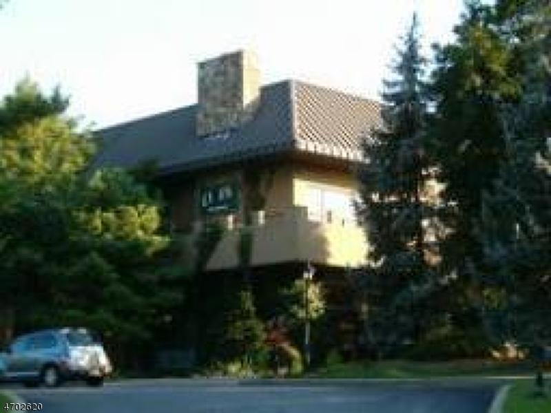 Maison unifamiliale pour l Vente à 2 Chamonix Dr, UNIT 206 Vernon, New Jersey 07462 États-Unis