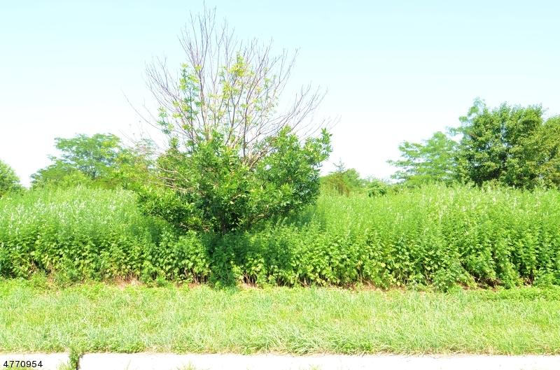 Земля для того Продажа на 7,11, 17 ROYAL ROAD Raritan, Нью-Джерси 08822 Соединенные Штаты