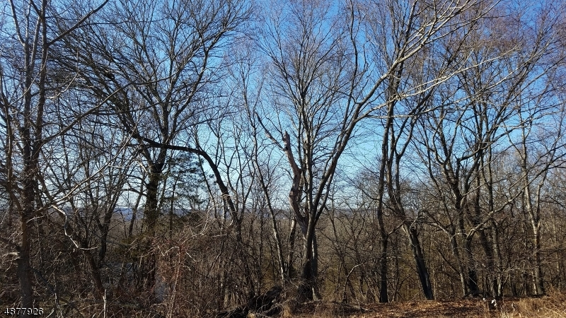 Land for Sale at Hardwick, New Jersey 07825 United States