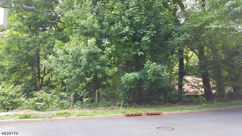 Additional photo for property listing at 130 Blauvelt Avenue  Ho Ho Kus, New Jersey 07423 États-Unis