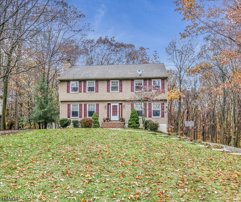 Single Family Home for Sale at 33 SUMMER TREE RUN 33 SUMMER TREE RUN Sparta, New Jersey 07871 United States