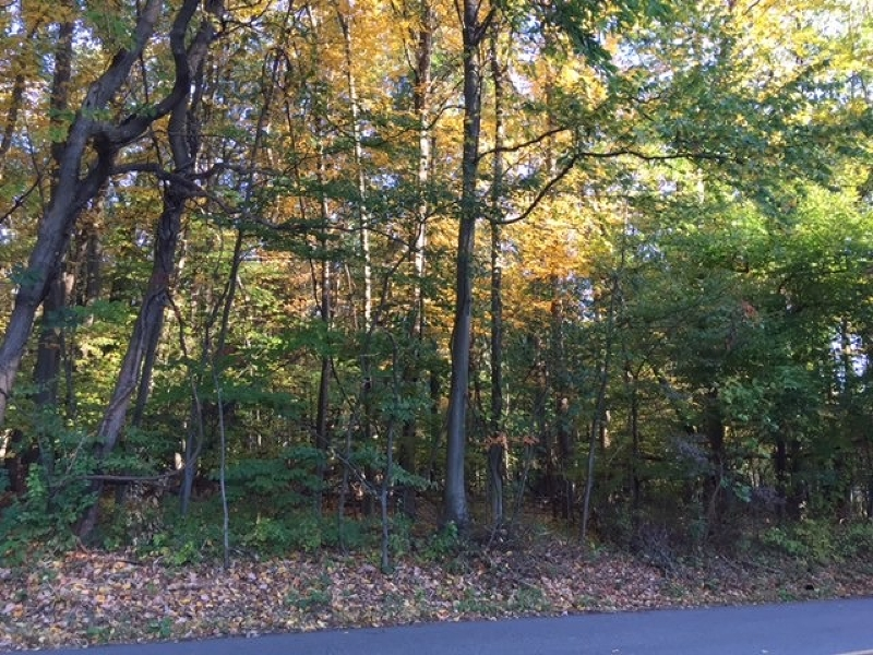 Land for Sale at 21 Zeek Road Morris Plains, 07950 United States