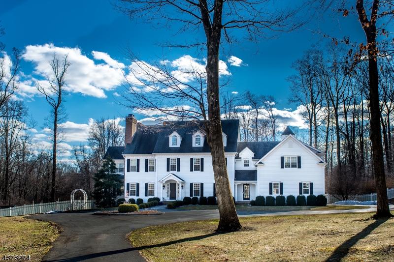 Maison unifamiliale pour l Vente à 203 POTTERSVILLE Road Chester, New Jersey 07930 États-Unis