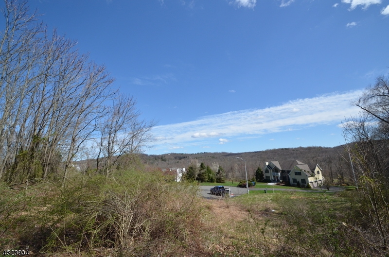 Additional photo for property listing at  Morris Township, New Jersey 07960 États-Unis