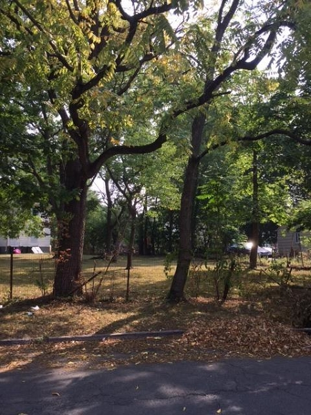 Additional photo for property listing at 1039 Rose Street  Plainfield, New Jersey 07060 United States