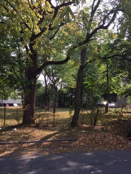 Additional photo for property listing at 1039 Rose Street  Plainfield, Nueva Jersey 07060 Estados Unidos
