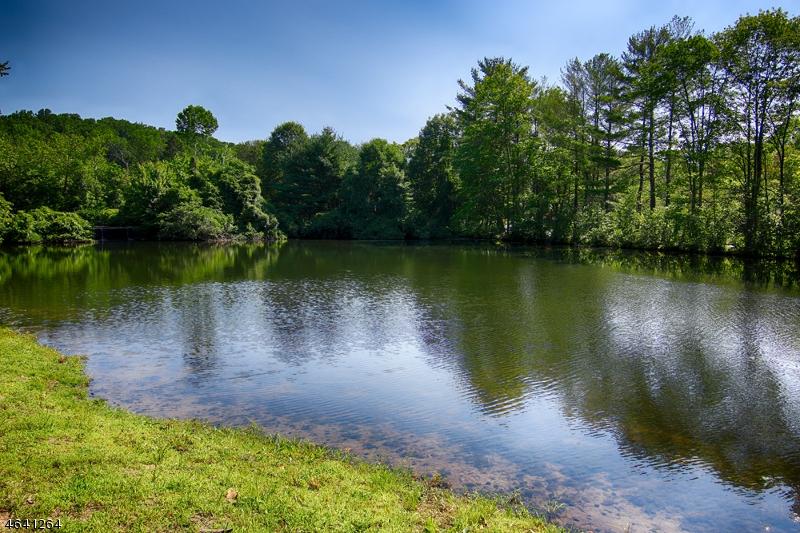 Additional photo for property listing at 54 Hull Road  Bernardsville, Nueva Jersey 07924 Estados Unidos