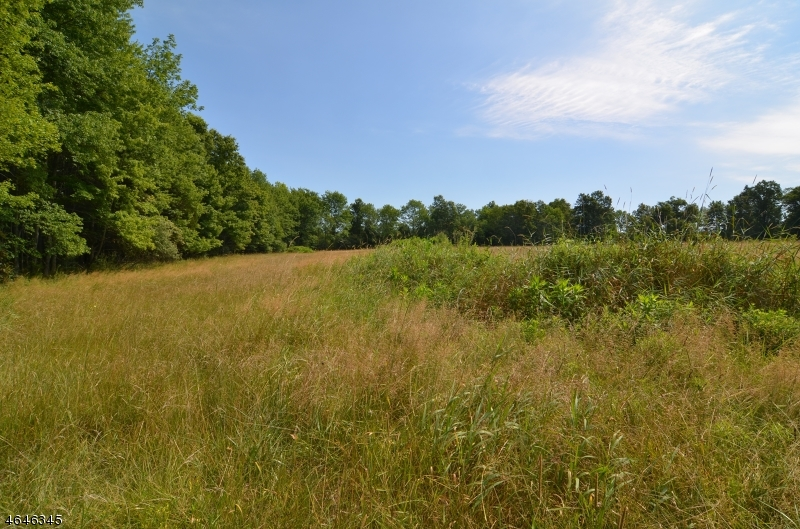Additional photo for property listing at 63 & 67 MUDDY RUN ROAD  Kingwood, Nueva Jersey 08825 Estados Unidos