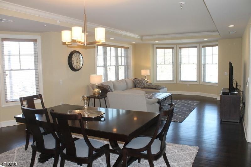 独户住宅 为 出租 在 40 W Park Place Unit 412 莫里斯敦, 新泽西州 07960 美国