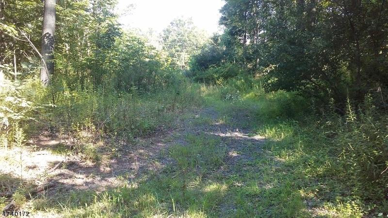 土地,用地 为 销售 在 5 County Road 635 Union, 新泽西州 08827 美国