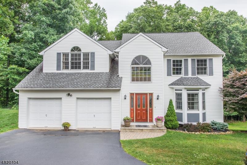 Maison unifamiliale pour l Vente à 119 DOVER-CHESTER Road Randolph, New Jersey 07869 États-Unis