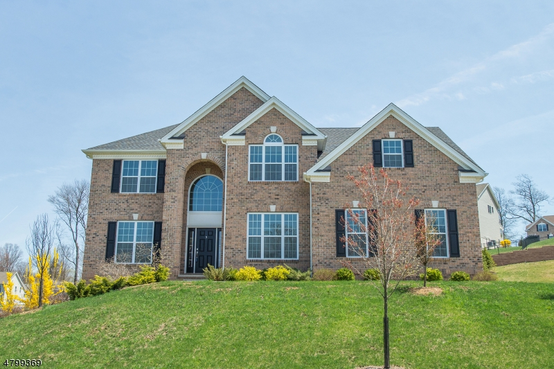 Частный односемейный дом для того Продажа на 5 Ruggiero Way Mount Olive, Нью-Джерси 07828 Соединенные Штаты