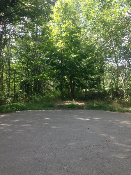 Additional photo for property listing at 221 OLD CENTER GROVE Road  Randolph, Нью-Джерси 07869 Соединенные Штаты