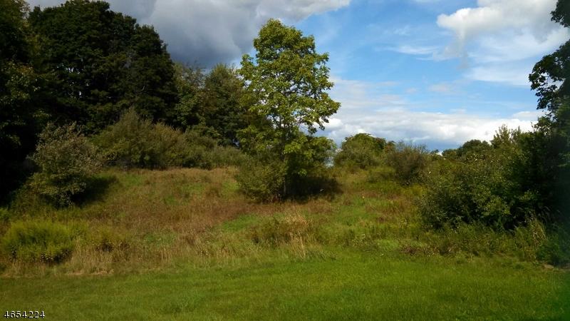 Земля для того Продажа на 115 & 117 Statesville Quarry Lafayette, Нью-Джерси 07848 Соединенные Штаты