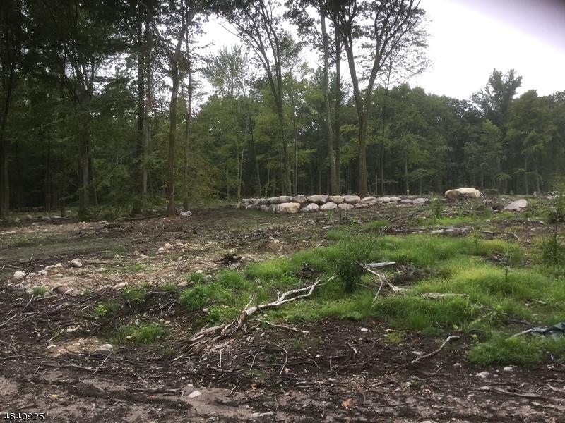 土地 為 出售 在 947A OLD SCHOOLHOUSE Road Stillwater, 新澤西州 07825 美國