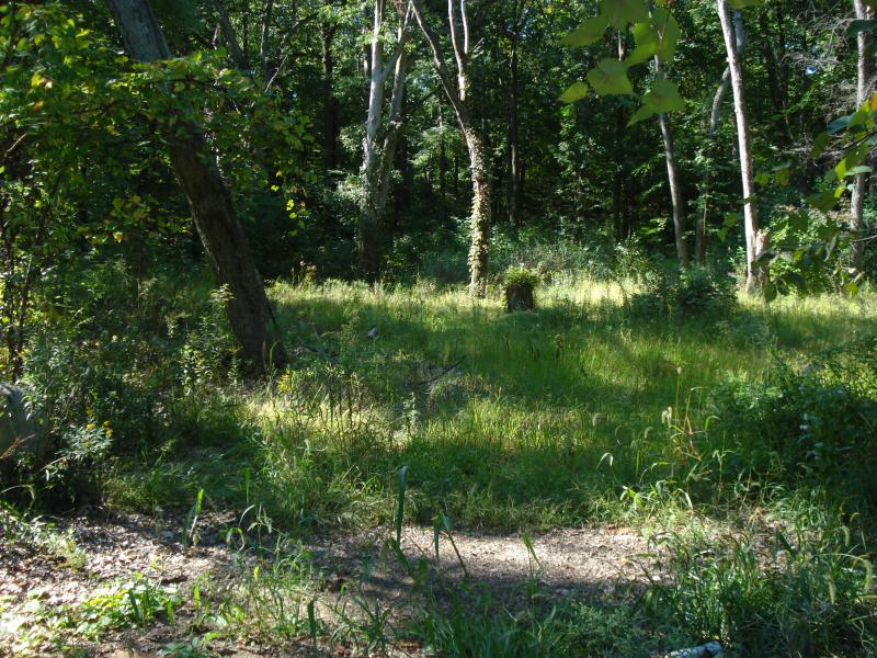 Land for Sale at Address Not Available Saddle River, New Jersey 07458 United States