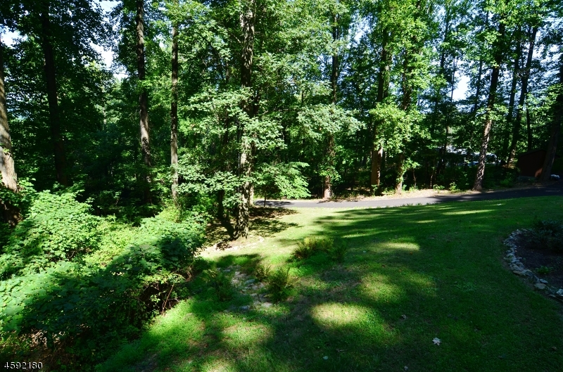 Additional photo for property listing at 265 Asbury West Portal Road  Asbury, New Jersey 08802 United States