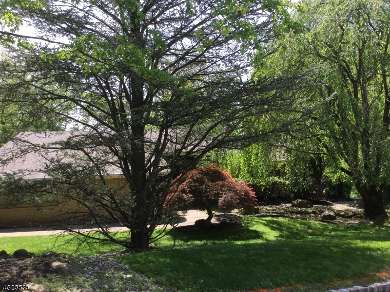 Single Family Home for Sale at 1019 Sunny Slope Drive Mountainside, New Jersey 07092 United States