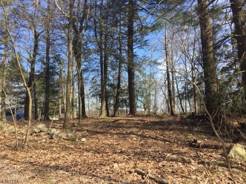 土地,用地 为 销售 在 CARMEL Road 西米尔福德, 新泽西州 07421 美国