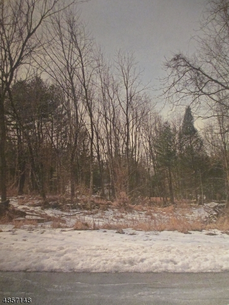 Land for Sale at 111 OVERLOOK Drive Montague, New Jersey 07827 United States