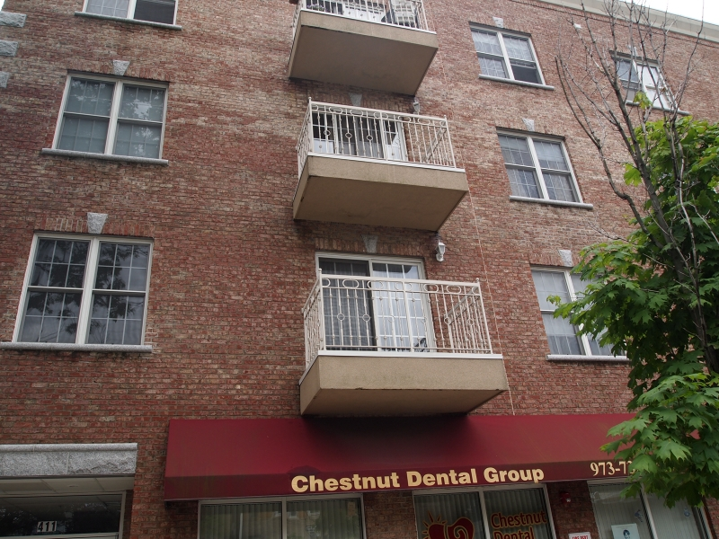 Single Family Home for Sale at 411-419 CHESTNUT Street Newark, New Jersey 07105 United States