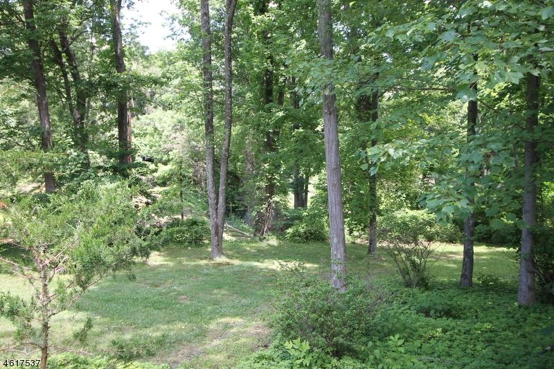 Casa Unifamiliar por un Venta en 6 Ironia Road Chester, Nueva Jersey 07930 Estados Unidos