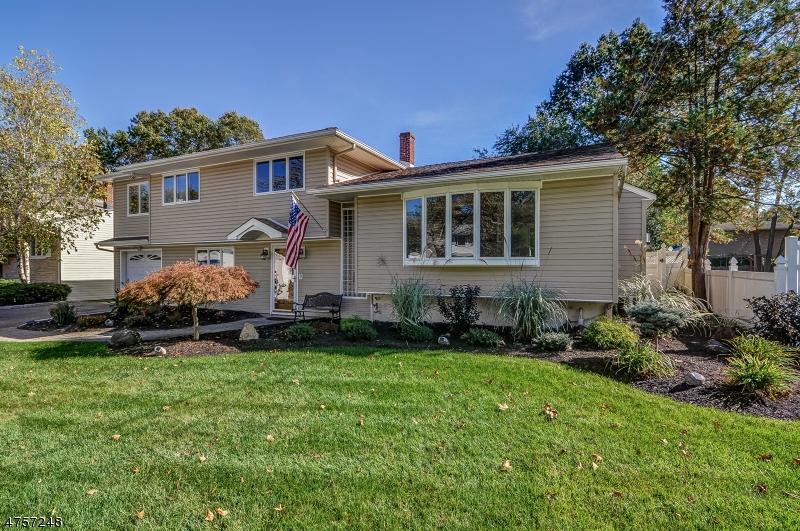 Частный односемейный дом для того Продажа на 41 Cypress Ter Springfield, Нью-Джерси 07081 Соединенные Штаты