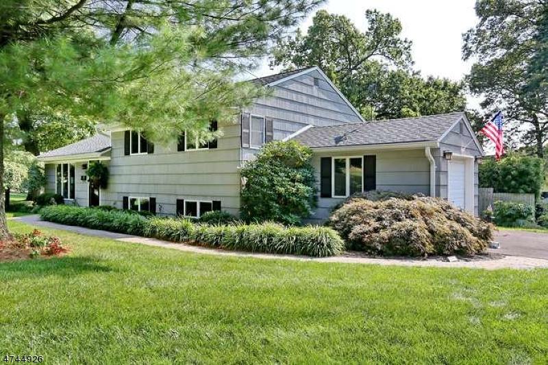 Частный односемейный дом для того Продажа на 24 Busteed Drive Midland Park, Нью-Джерси 07432 Соединенные Штаты
