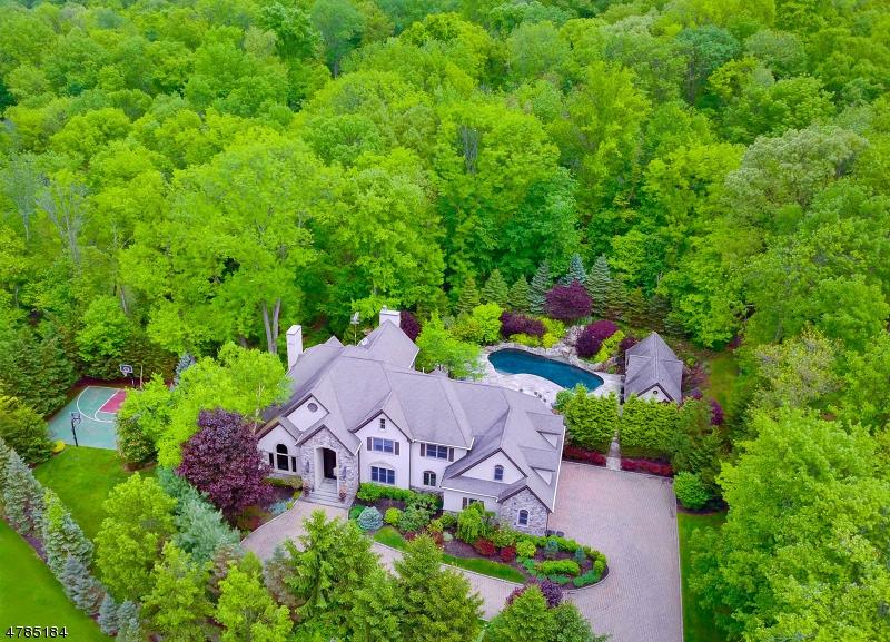 Maison unifamiliale pour l Vente à 10 STRATFORD COURT Warren, New Jersey 07059 États-Unis