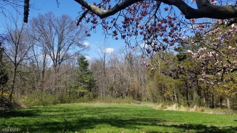 Terrain pour l Vente à 2002 GILBRIDE Bridgewater, New Jersey 08836 États-Unis