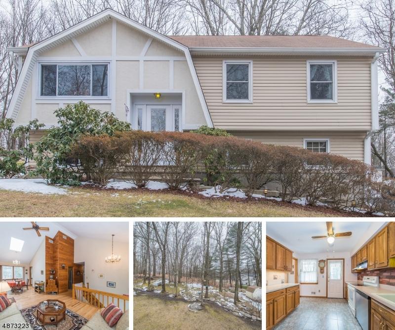 Property pour l Vente à 56 HILLSIDE AVENUE Mine Hill, New Jersey 07803 États-Unis
