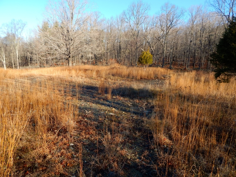 Additional photo for property listing at 1227 Route 23  Sussex, Нью-Джерси 07461 Соединенные Штаты