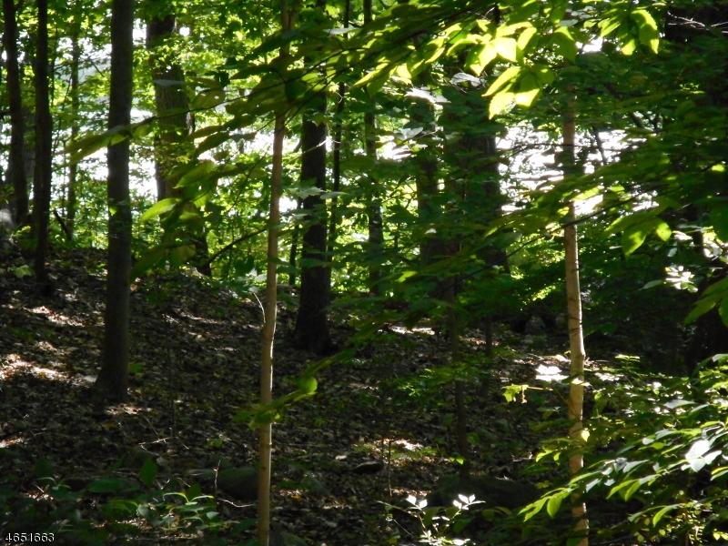 Additional photo for property listing at 499 Green Pond Road  Rockaway, Nueva Jersey 07866 Estados Unidos
