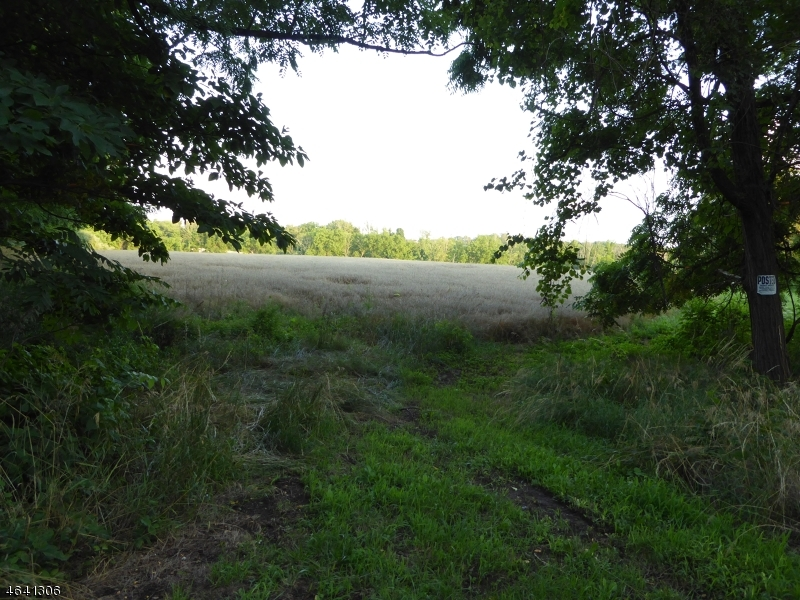 Additional photo for property listing at 107 Pittstown Road  Pittstown, Нью-Джерси 08867 Соединенные Штаты