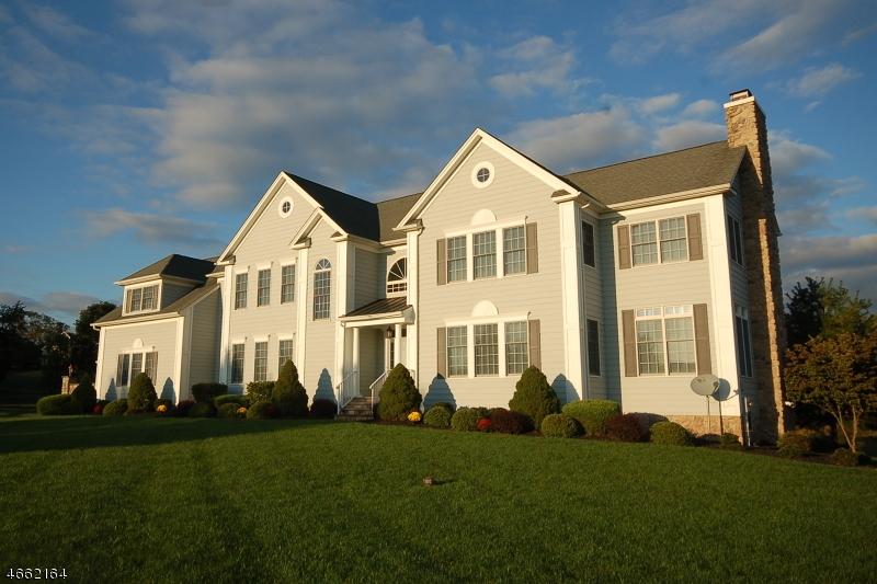 Частный односемейный дом для того Продажа на 2 Steinbeck Court Milford, 08848 Соединенные Штаты
