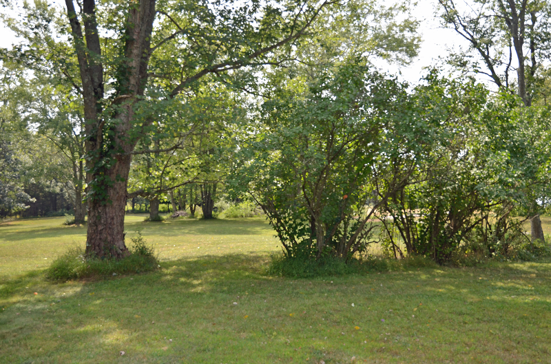 Additional photo for property listing at 1707 COUNTY RD 519  Bloomsbury, New Jersey 08804 États-Unis