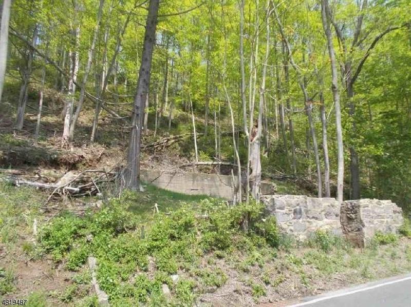 土地 為 出售 在 913 MAPLE Avenue Stillwater, 新澤西州 07860 美國