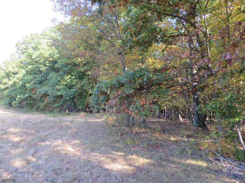 Additional photo for property listing at 3540 E Side US Route 206  Bedminster, Нью-Джерси 07921 Соединенные Штаты