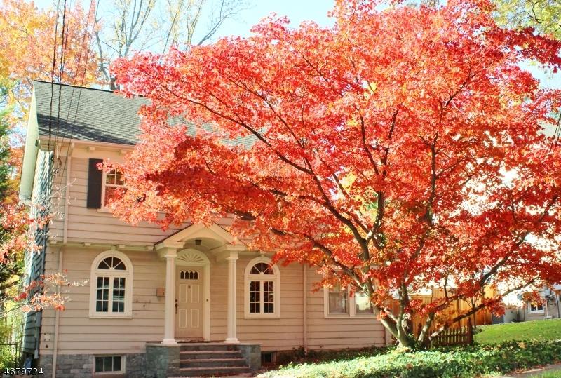 Частный односемейный дом для того Продажа на 28 BERKELEY Road Millburn, 07041 Соединенные Штаты