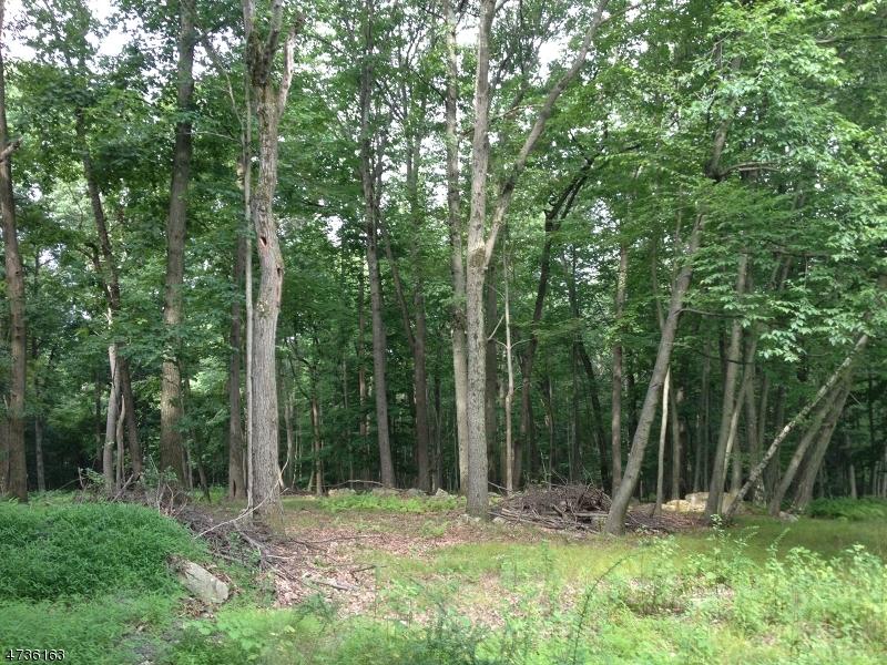 Terrain pour l Vente à 116-2 DRYDEN Road Bernardsville, New Jersey 07924 États-Unis