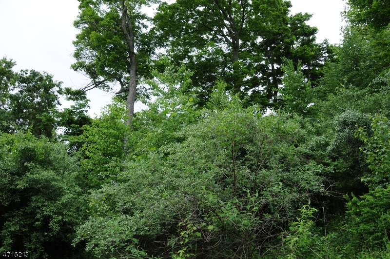 Land for Sale at 18 Spring Hill Lane Great Meadows, New Jersey 07838 United States