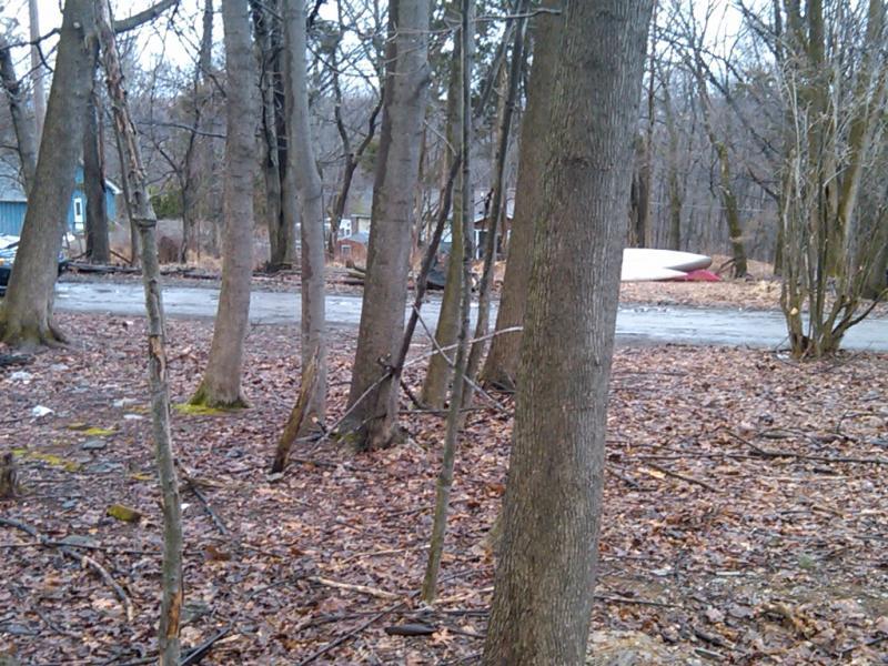 土地 為 出售 在 QUAIL Trail Stillwater, 新澤西州 07860 美國