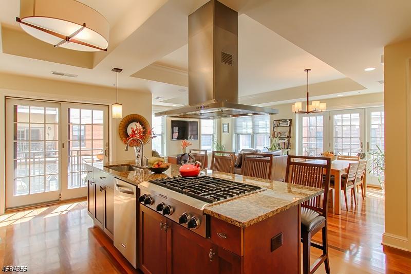 Casa Unifamiliar por un Alquiler en 40 W Park Place Unit 505 Morristown, Nueva Jersey 07960 Estados Unidos