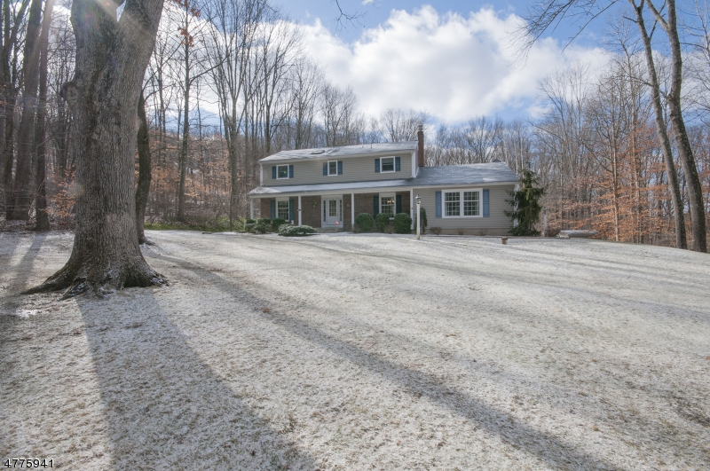 一戸建て のために 売買 アット 19 Delwood Road Chester, ニュージャージー 07930 アメリカ合衆国