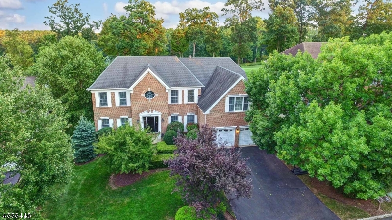 Maison unifamiliale pour l Vente à 76 Vanderveer Drive Basking Ridge, New Jersey 07920 États-Unis