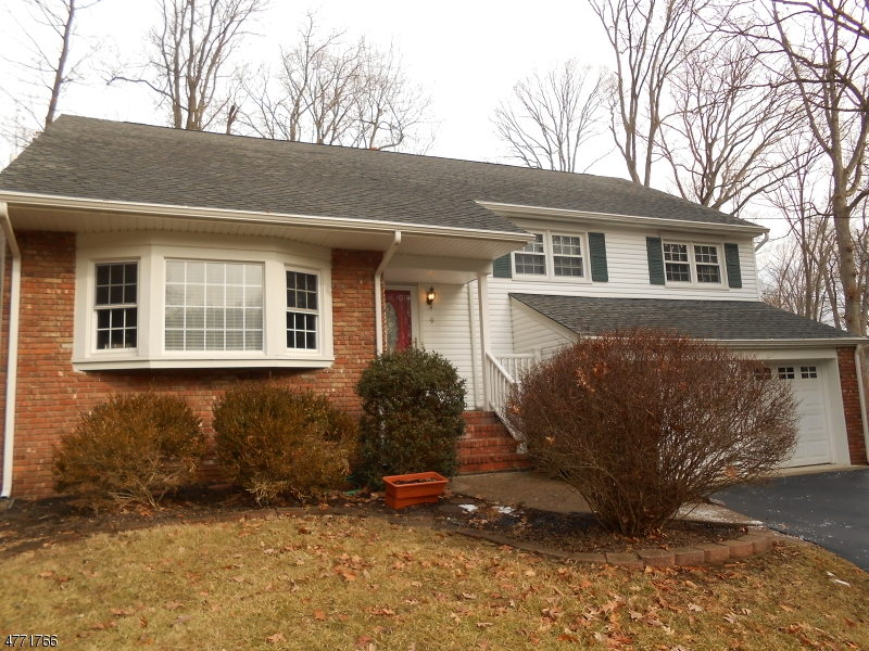 Single Family Home for Sale at 9 Stony Brook Road 9 Stony Brook Road Morris Plains, New Jersey 07950 United States