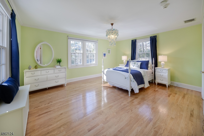 Additional photo for property listing at 32 LENOX RD 32 LENOX RD Summit, New Jersey 07901 United States