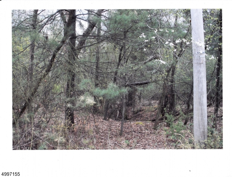 Land for Sale at Buena Vista Township, New Jersey 08330 United States
