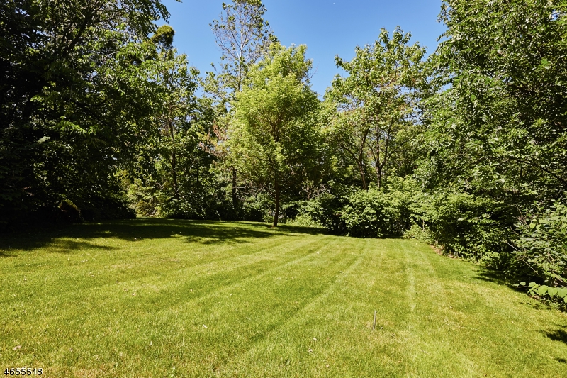 Additional photo for property listing at 82 Fells Road  Essex Fells, Nueva Jersey 07021 Estados Unidos