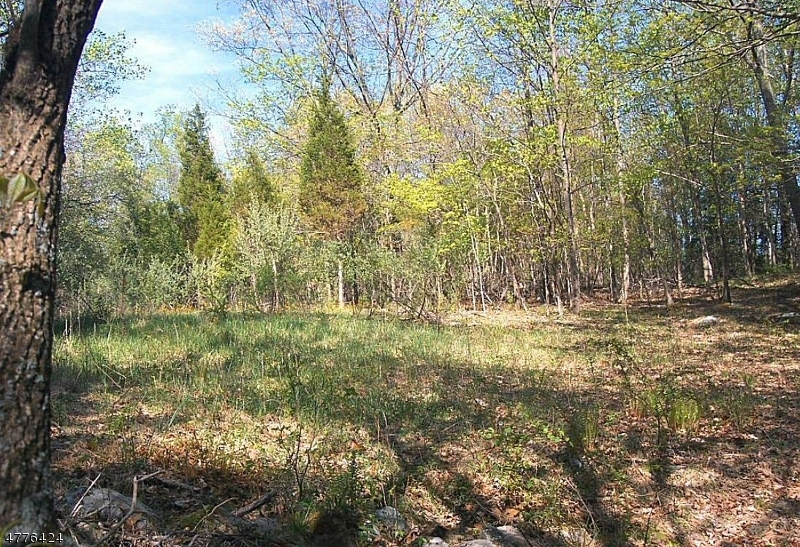 Земля для того Продажа на 177 Stillwater Road Hardwick, Нью-Джерси 07825 Соединенные Штаты